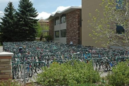 Прямое зачисление в магистратуру в Colorado State University